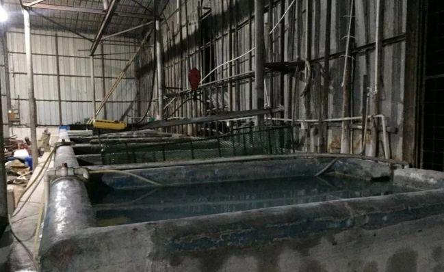 中山市一灯饰配件厂外排废水总浓度超出排放标准15邹城.5倍邹城